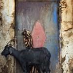 moyen-atlas chaabt chèvre