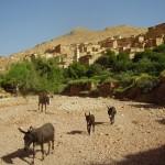 Halte au bord d'un oued, pres d'un village amazigh